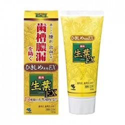 Kobayashi Leaf Shoyo EX Medicated Toothpaste