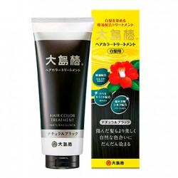 Oshima Tsubaki Hair Color Treatment Natural Black